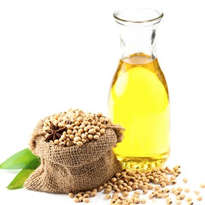 Mamaearth best oil free face moisturizer for dry skin with soybean oil